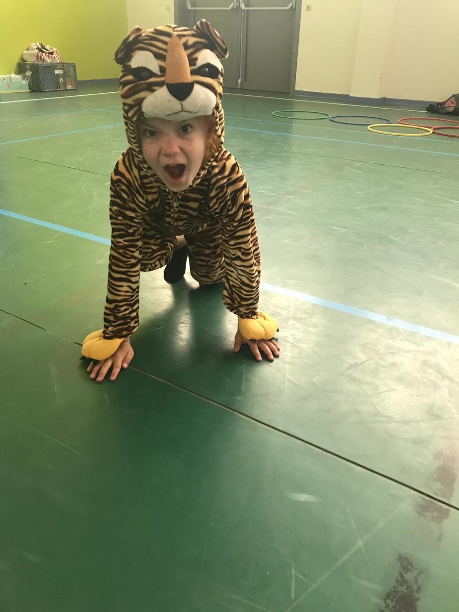 Jungle fun 2